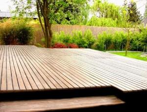 Sibirski macesen za lesene terase