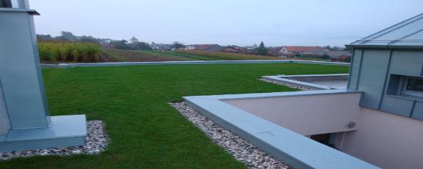 debelina zelene strehe
