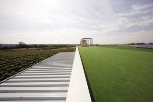 Cena zelene strehe